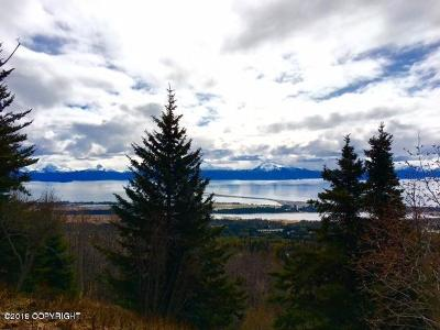 Residential Lots & Land For Sale: 938 Glacier View Court