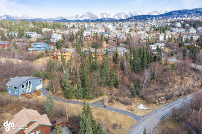 Anchorage Residential Lots & Land For Sale: Southpark Bluff Drive