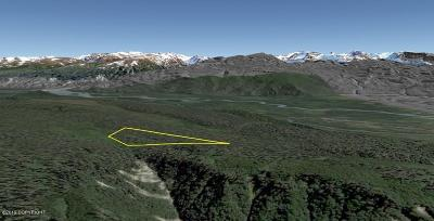 Residential Lots & Land For Sale: Tr 2 Head of Kachemak Bay (No Road)