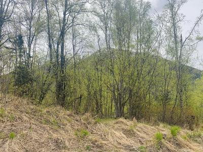 Chugiak Residential Lots & Land For Sale: 25124 Malcolm Drive