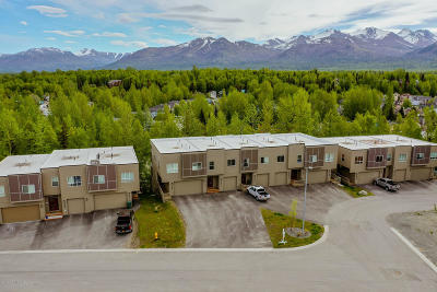 Anchorage Condo/Townhouse For Sale: 3693 Little Bear Place #25