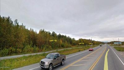 Wasilla Residential Lots & Land For Sale: 2350 Knik-Goose Bay Road