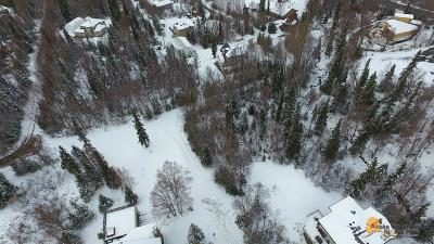 Anchorage Residential Lots & Land For Sale: B 1 L 10 So Lakewood Hills #1