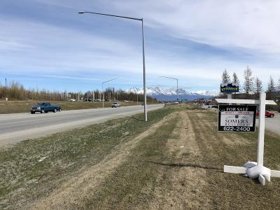 Commercial For Sale: 2700 E Parks Highway