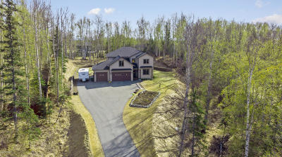 Wasilla Single Family Home For Sale: 3408 W Discovery Loop