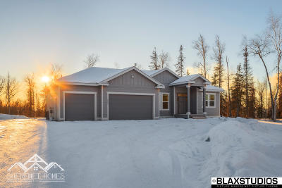 Big Lake, Palmer, Sutton, Wasilla, Willow Single Family Home For Sale: 3520 N Slaton Street