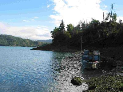 Homer, Anchor Point, Ninilchik, Seldovia, Halibut Cove Residential Lots & Land For Sale: Tr C ASLS 76-59 Bear Cove