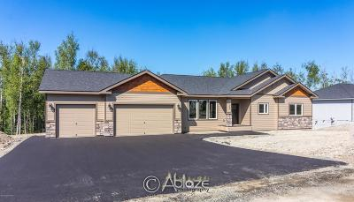 Big Lake, Palmer, Sutton, Wasilla, Willow Single Family Home For Sale: 7069 W White Birch Drive