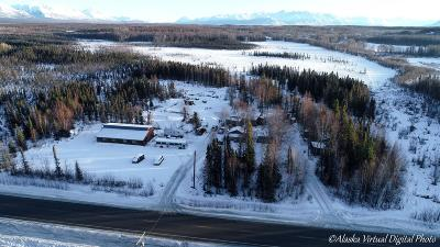 Wasilla Residential Lots & Land For Sale: 3601 Church Road