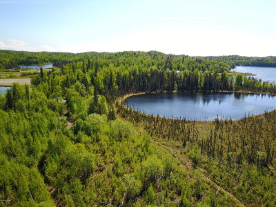Big Lake Residential Lots & Land For Sale: Tr 3 No Road Big Lake