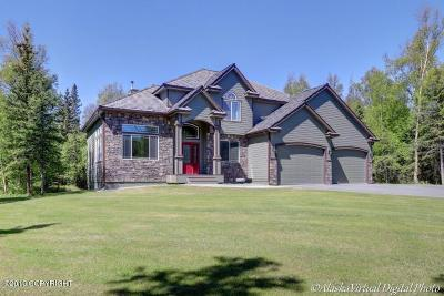 Palmer Single Family Home For Sale: 3450 S Eielson Circle