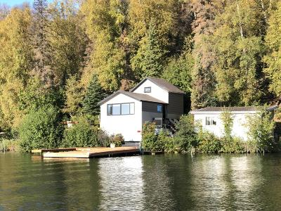 Big Lake Single Family Home For Sale: L1 No Road