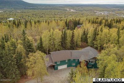 Chugiak, Eagle River Single Family Home For Sale: 11824 Inspiration Drive
