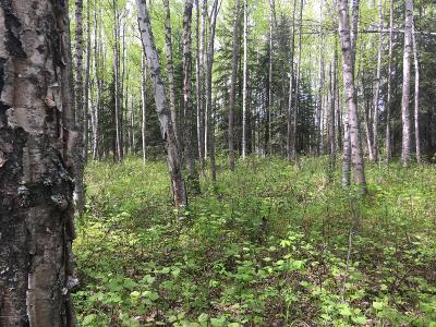 Wasilla AK Residential Lots & Land For Sale: $52,900