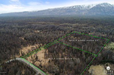 Wasilla Residential Lots & Land For Sale: 2471 Sleepy Hollow Circle