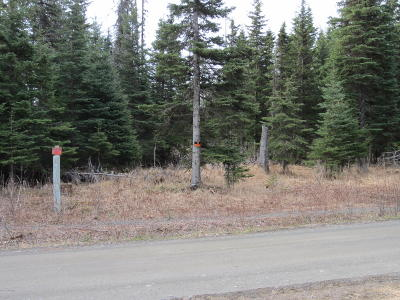 Ninilchik Residential Lots & Land For Sale: 22860 Shady Drive