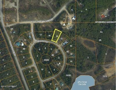 Residential Lots & Land For Sale: 11389 Blue Sky Drive
