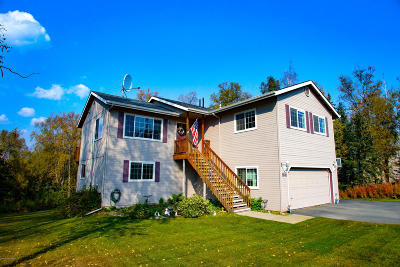 Wasilla Single Family Home For Sale: 3884 E Serendipity Loop
