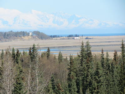 Kasilof Residential Lots & Land For Sale: 25005 Arctic Fox Road