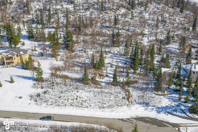 Anchorage AK Residential Lots & Land For Sale: $333,500