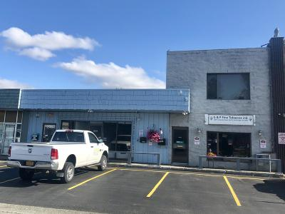 Anchorage Commercial For Sale: 2509 Fairbanks Street