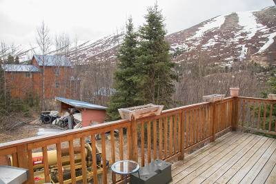 Eagle River Single Family Home For Sale: 2225 South River Lane