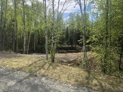 Wasilla Residential Lots & Land For Sale: 2706 Windy Bottom Road