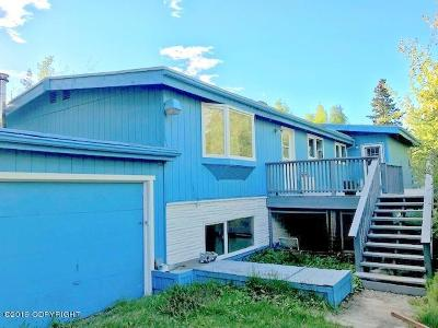 Chugiak Single Family Home For Sale: 19497 Klondike Drive