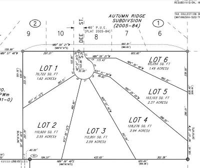Wasilla Residential Lots & Land For Sale: L6 Jase Circle