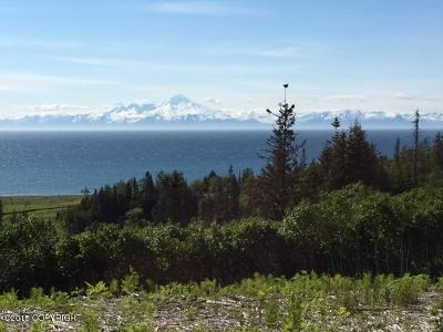 Anchor Point Residential Lots & Land For Sale: L8 Coastal Vista Circle