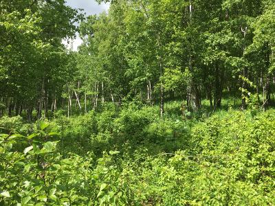 Palmer Residential Lots & Land For Sale: 13571 Sybarite Road