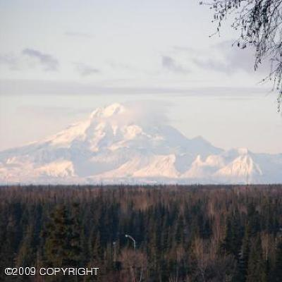 Soldotna Residential Lots & Land For Sale: 370 Cody Court