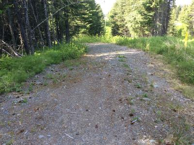 Anchor Point Residential Lots & Land For Sale: 35365 Old Sterling Highway
