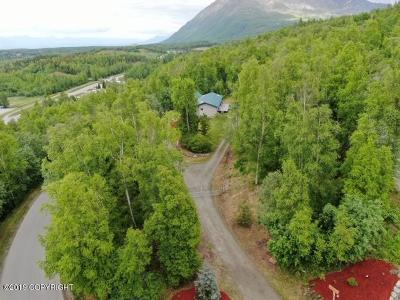 Chugiak Single Family Home For Sale: 18251 Bending Birch Drive