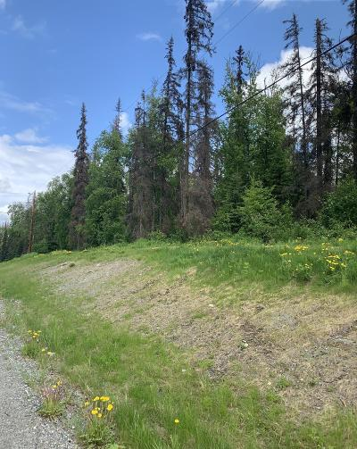 Wasilla Residential Lots & Land For Sale: 7069 Alans Drive