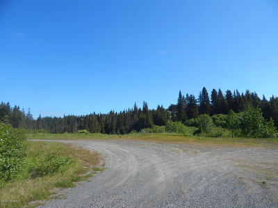 Homer, Anchor Point, Ninilchik, Seldovia, Halibut Cove Residential Lots & Land For Sale: 41110 Sterling Highway