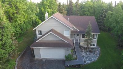 Anchorage Single Family Home For Sale: 5450 Naknek Lane
