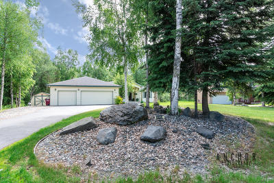 Wasilla Single Family Home For Sale: 6830 W Troy Place
