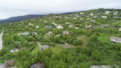 Anchorage Residential Lots & Land For Sale: L19 B4 Rezanof Circle