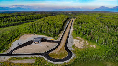 Wasilla Residential Lots & Land For Sale: 9885 Aircraft Court