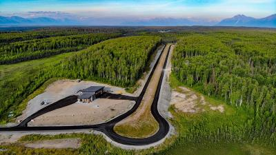 Wasilla Residential Lots & Land For Sale: 9702 Aircraft Court