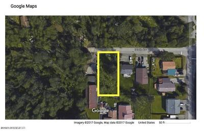 Anchorage Residential Lots & Land For Sale: NHN 24th Avenue