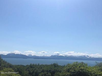 Homer AK Residential Lots & Land For Sale: $929,000