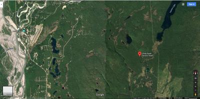 Talkeetna Residential Lots & Land For Sale: 23946 Zitziana Road