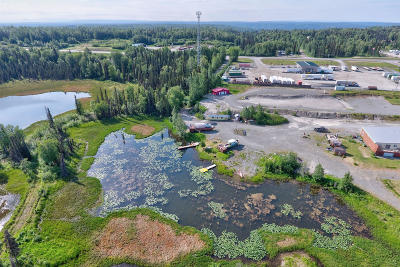 Soldotna Residential Lots & Land For Sale: 36096 Pine Street