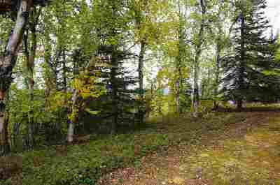 Healy Residential Lots & Land For Sale: Lot 2 Ridgetop Cabins Road