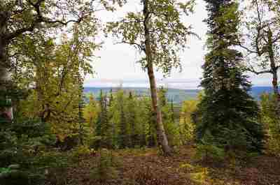 Healy Residential Lots & Land For Sale: Lot 4 Ridgetop Cabins Road