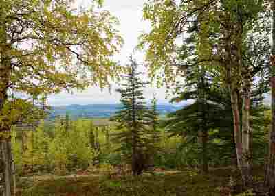 Healy Residential Lots & Land For Sale: Lot 5 Ridgetop Cabins Road