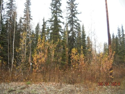 North Pole Residential Lots & Land For Sale: Lot 16 Nimbus Court