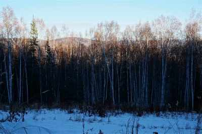 Fairbanks Residential Lots & Land For Sale: 744 Fox View Road